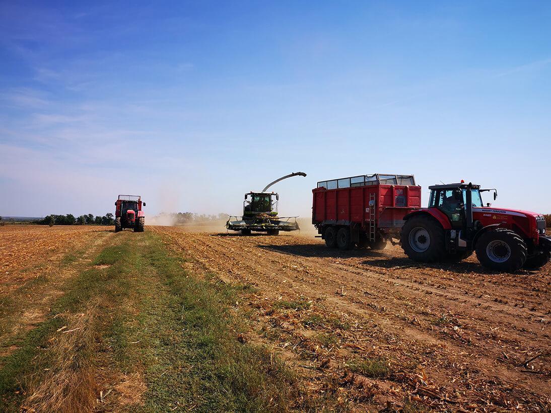 Poľná výroba 1